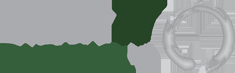 Silver17 Consulting Logo